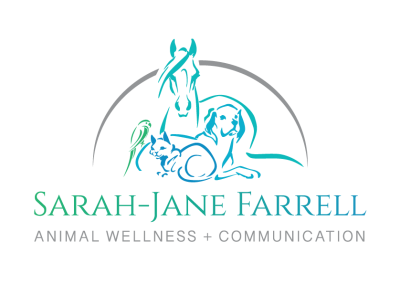 SJF-Logo-Colour